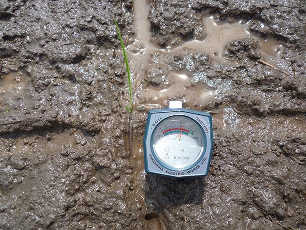 pH pada Tanah : Macam Tanah, dan Manfaat Mengetahui pH Tanah