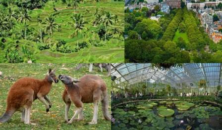 8 Ciri Ciri Ekosistem Buatan Berserta Contohnya Materiipa Com