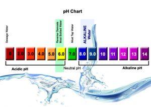 ph dalam air