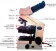Bagian-bagian dan Fungsi Mikroskop Binokuler Terlengkap