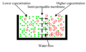 semipermeable