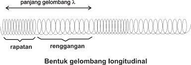 Gelombang Longitudinal : Jenis – Contoh – Rumus dan Contoh Soal