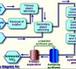 Gas Amonia : Fungsi – Proses Pembentukan – Cara Menampung – Bahaya