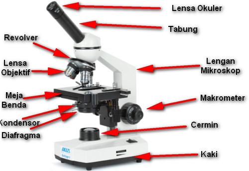 Bagian-Bagian Mikroskop Elektron dan Fungsinya Serta Cara Kerjanya