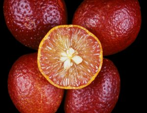 blood lime