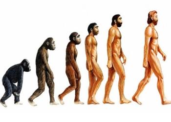 11 Teori Evolusi Menurut Para Ahli