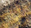Tanah Andosol: Ciri-Ciri, Kegunaan dan Persebarannya